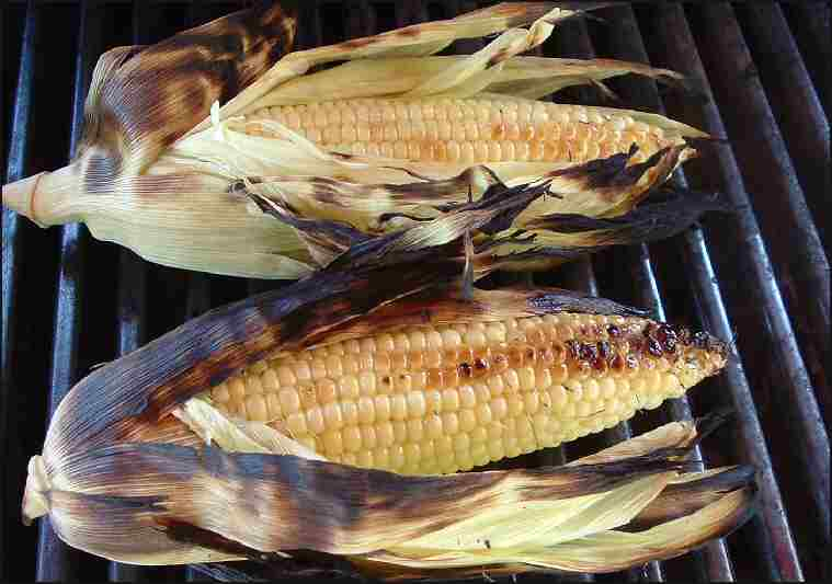 Photo: Grilled corn, husks peeled back, exposing attractive grill ...
